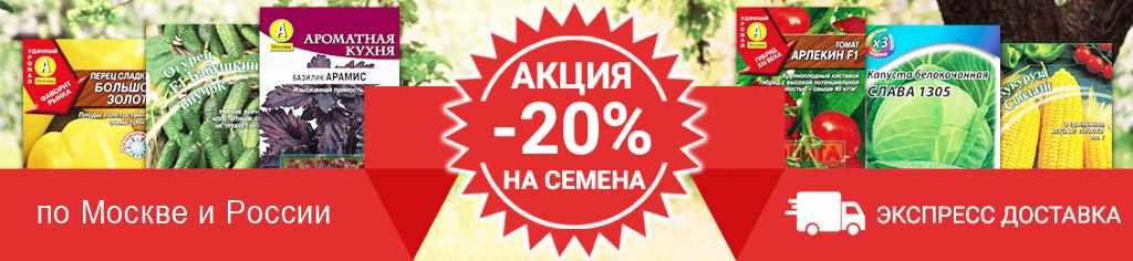 купить семена интернет-магазин